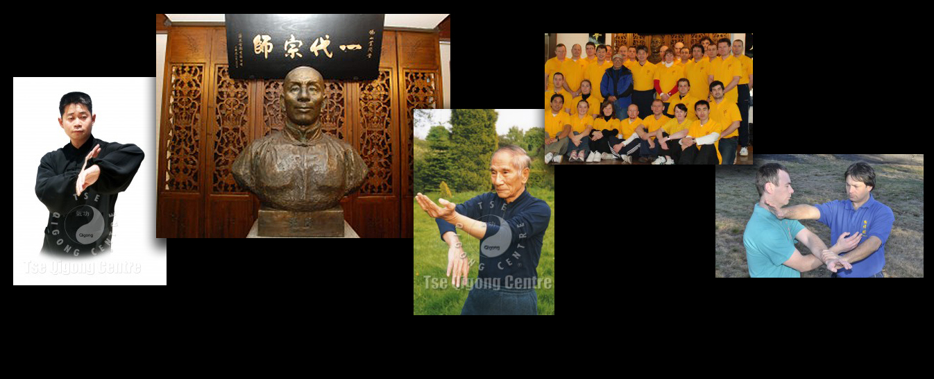 Ip Man Wing Chun Kungfu -  Adam Wallace Chinese Health and Martial Arts - Montage