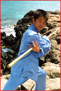 Chun Yuen Quan - Master Michael Tse - Adam Wallace Chinese Health and Martial Arts
