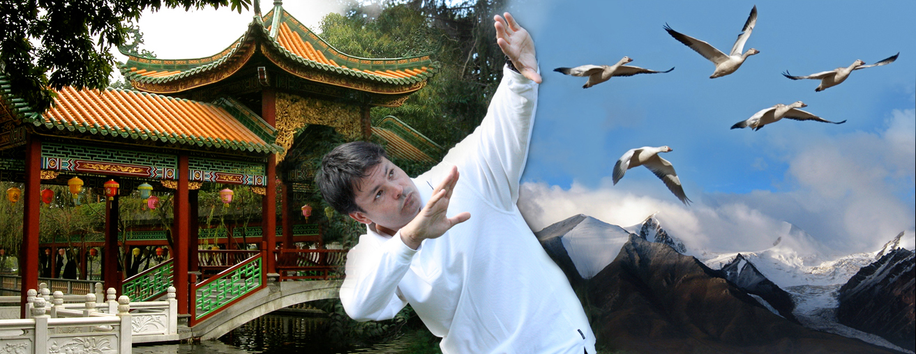 Wild Goose Qigong - Adam Wallace Chinese Health and Martial Arts
